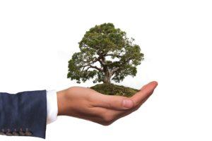 permaentreprise, prendre soin de la terre, durabilité, économie solidaire, écologie